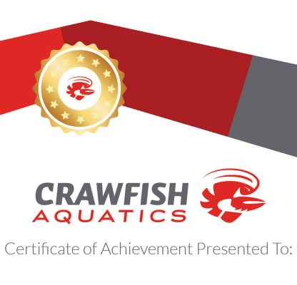 Crawfish Aquatics Certificate